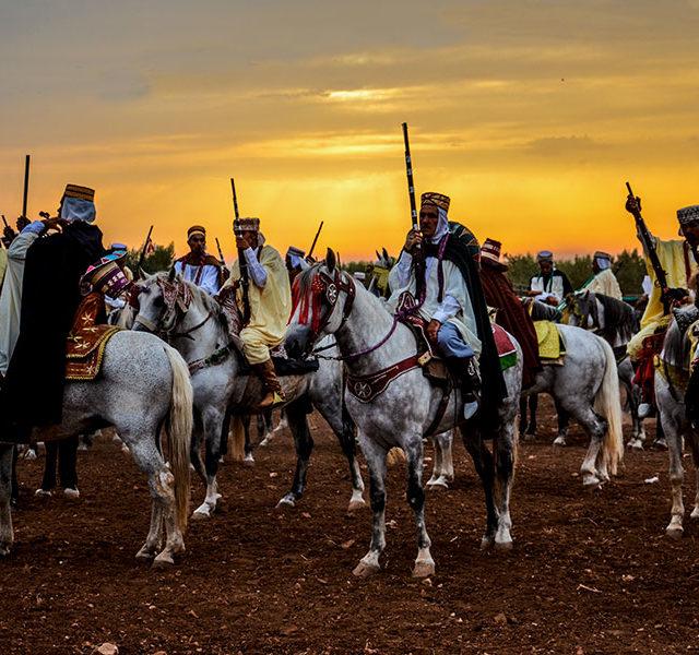 Horse_fantasia_Algeria